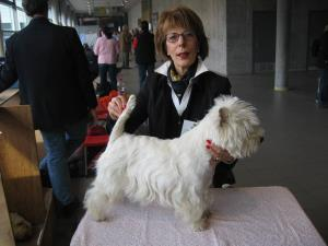 Exposition Canine Internationale Fribourg
